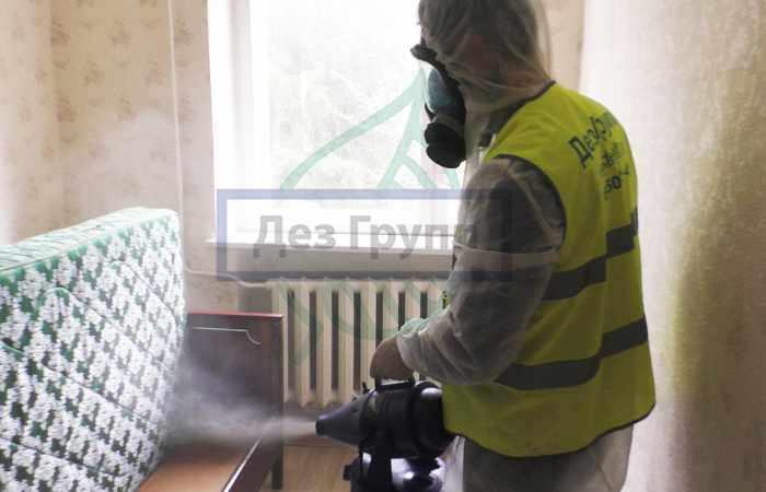 Профессиональная обработка ковров и помещений от блох