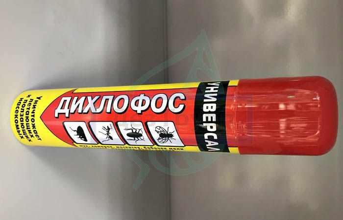 Эффективное средство от тараканов - аэрозоль