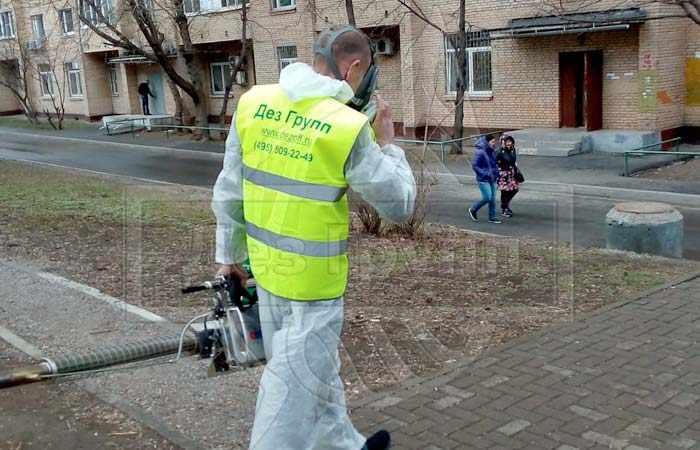 Дезинфекция мусоровоза в Москве