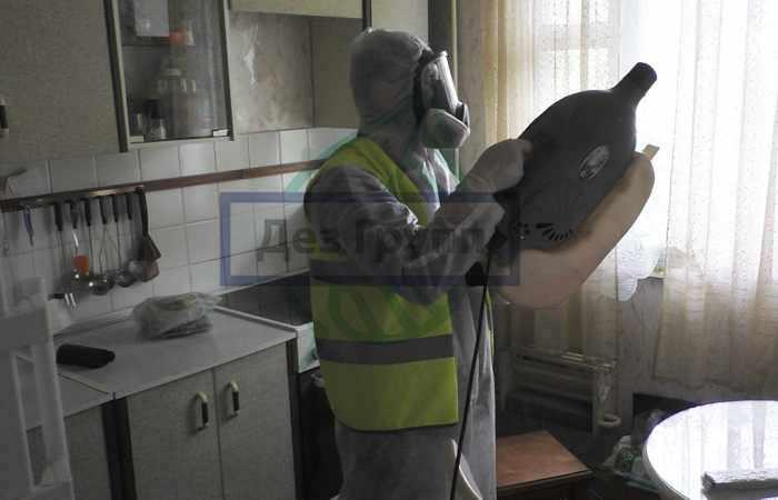 Уничтожение мошки в помещениях, на кухне профессиональным оборудованием