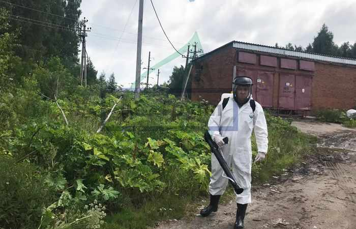 Юридические лица: штрафы за борщевик в городе Москва для фирмы