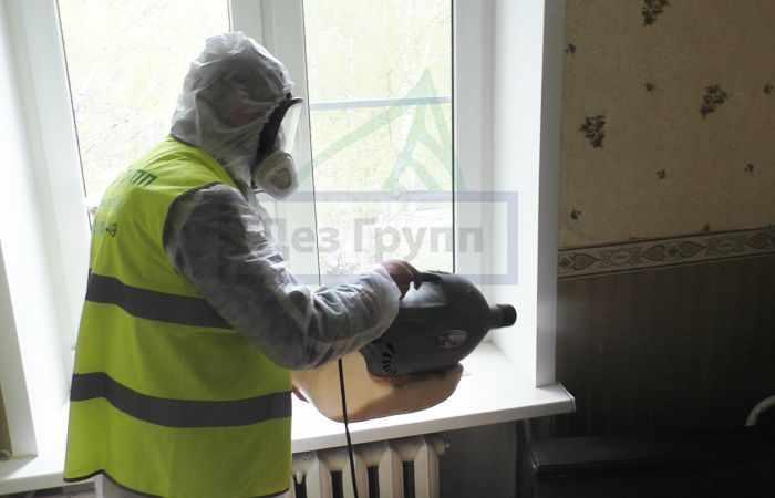 Обработка квартир от тараканов в Москве
