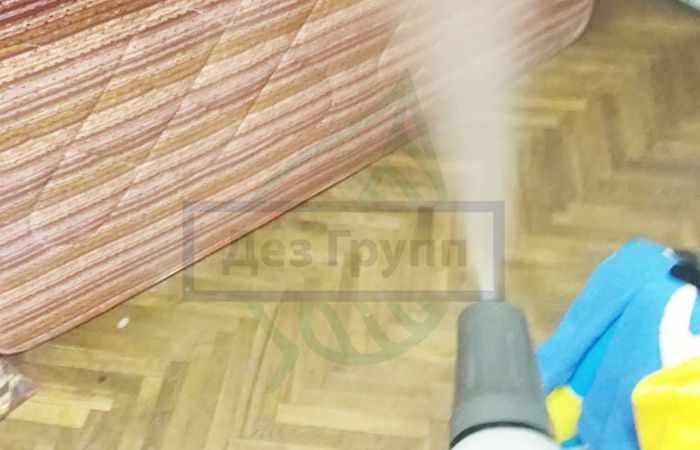 Как бороться с жуками в квартире в Москве