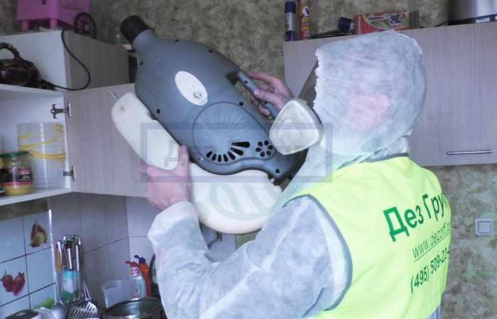 Профессиональная травля тараканов в Москве