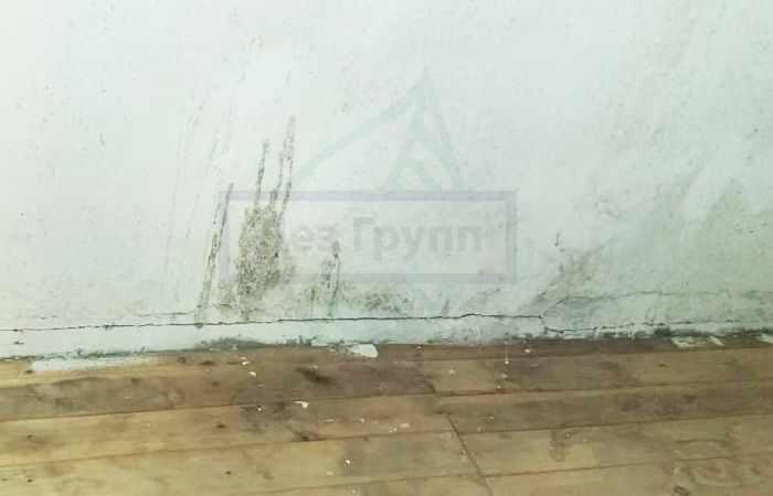 Средство от грибка на стенах в ванной - полная очистка