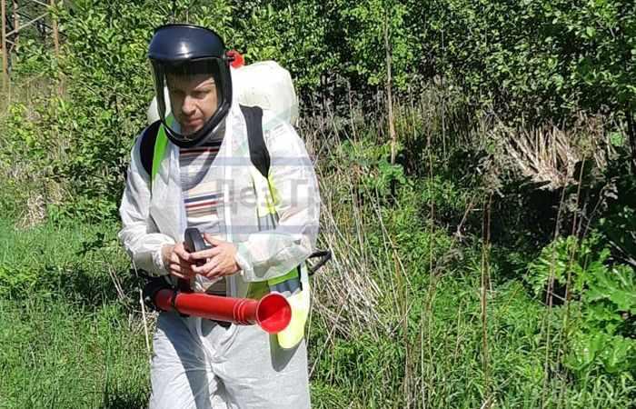 Уничтожение насекомых и грызунов - исключительно опытными специалистами