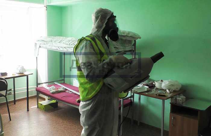 Периодичность дезинфекции жилых помещений общежитий