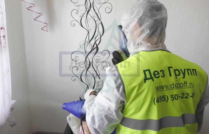 Противогрибковая обработка помещения в Москве