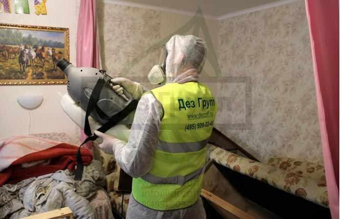 Дезинфекция от клопов в Москве