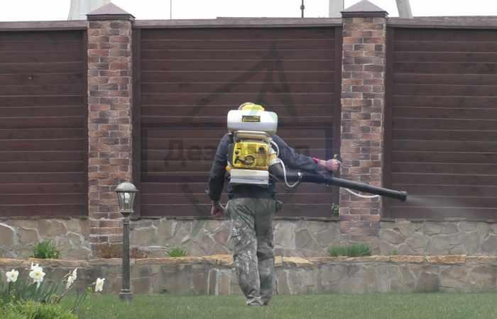 Чтобы избавиться от клопа-солдатика можно воспользоваться услугами СЭС