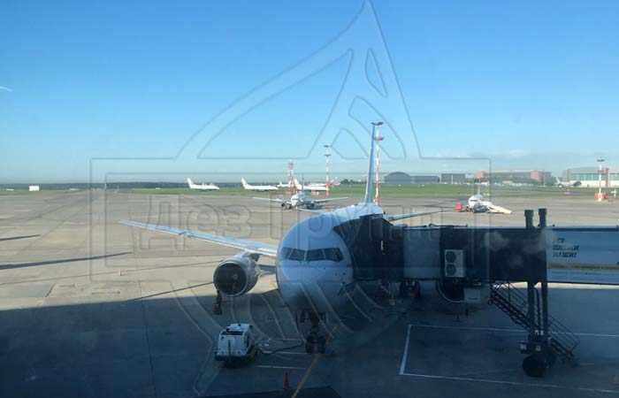 Дезинсекция авиатранспорта