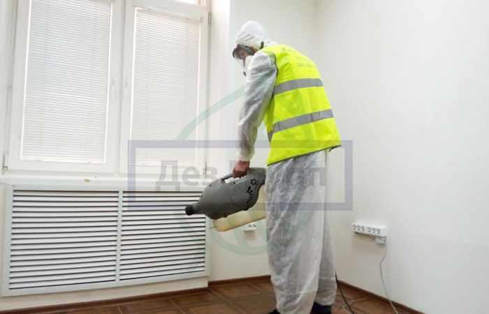 Обработка дома от мух - профессиональная служба