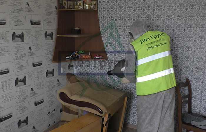 Дезинфекция от клопов в городе Мытищи - быстрый и эффективный результат