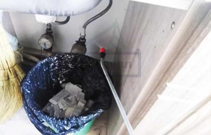 Как избавиться от мошек в доме раз и навсегда