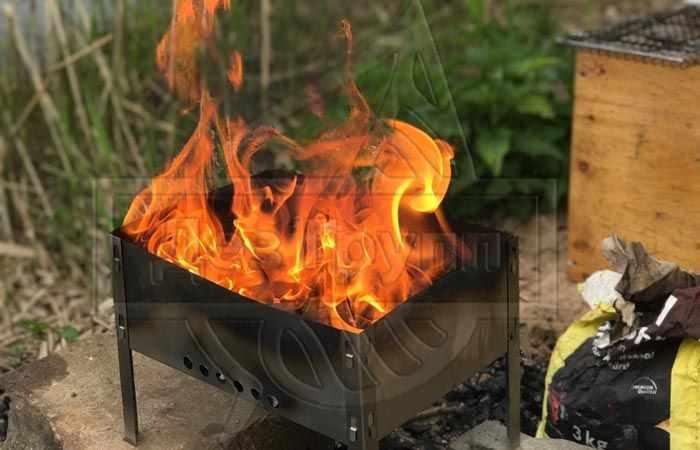 Осы на даче как избавиться народными средствами - дым от костра