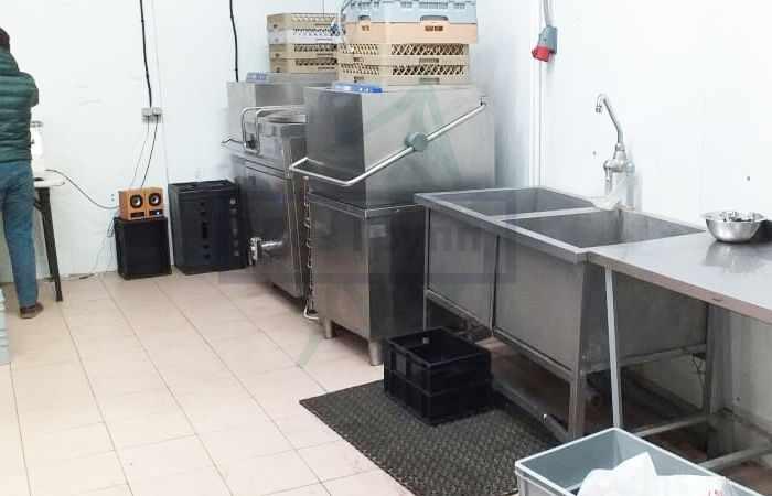 Как избавиться от назойливых мух в ресторане: химическая обработка