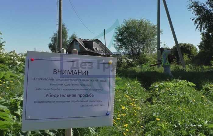 Служба по уничтожению борщевика в Москве и регионах - Дез Групп
