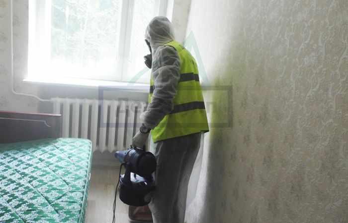 Уничтожение моли в Москве службой СЭС