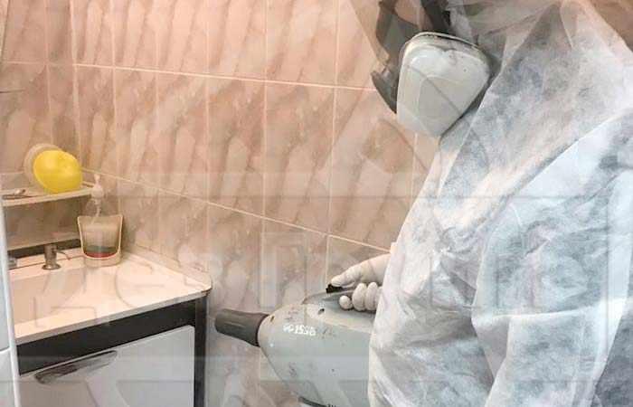 Дезинфекция от чешуйницы в ванной