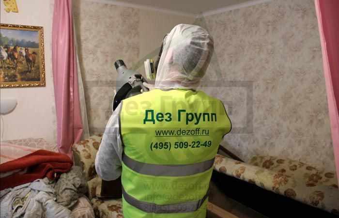 Истребление тараканов в Москве
