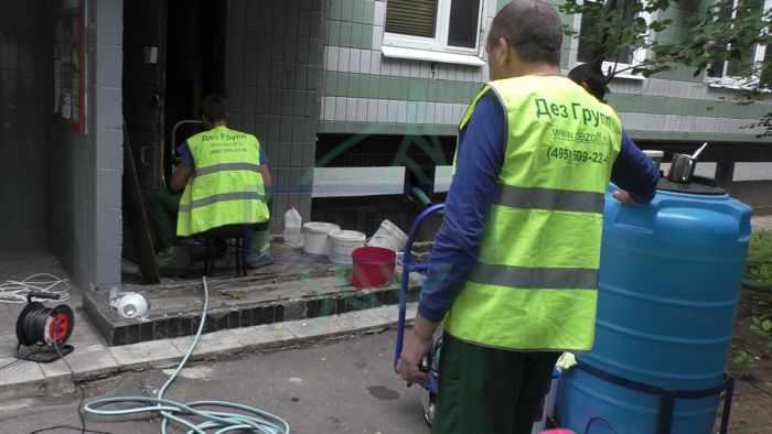 Дератизация мусоропровода