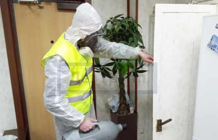 Обработка от насекомых во всех комнатах