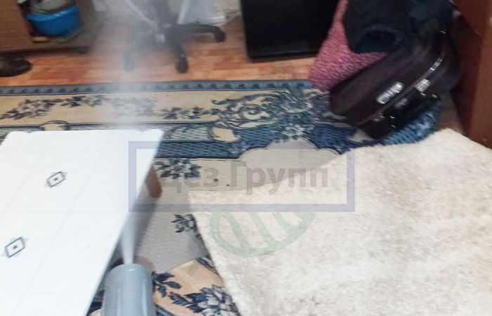 Уничтожение чешуйниц по всей квартире