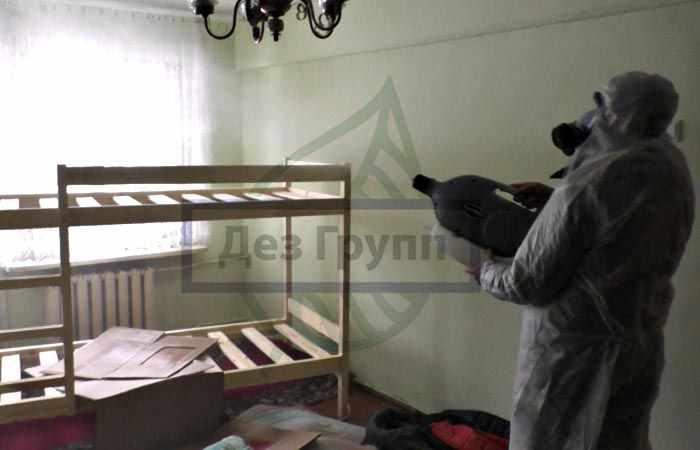 Уничтожение тараканов в Москве
