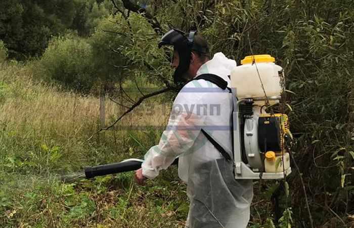 Химическая защита для растений от вредителей
