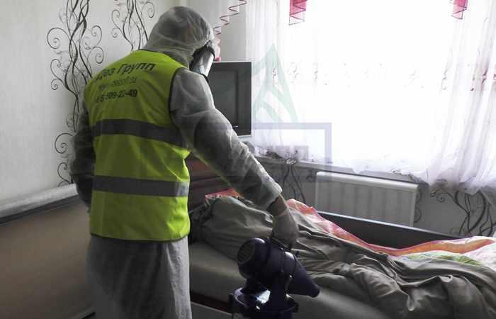 Уничтожение блох в Москве с гарантией на 1 год