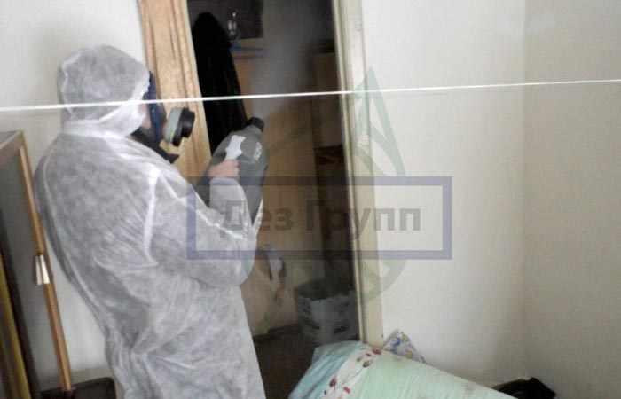 Обработка квартиры от туберкулеза