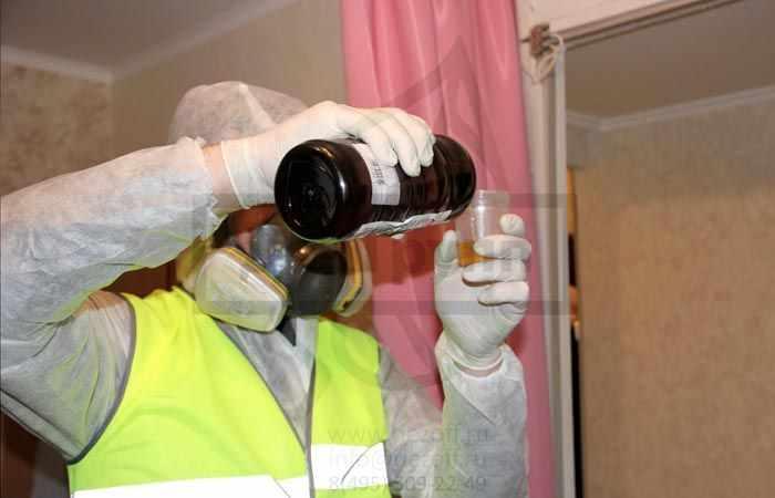 Как вывести муравьев из квартиры борной кислотой