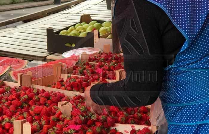 Откуда берется пищевая моль - можно принести из рынков или магазина