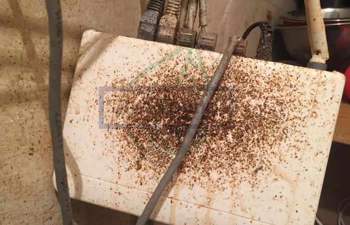 Купить гель от тараканов в Москве