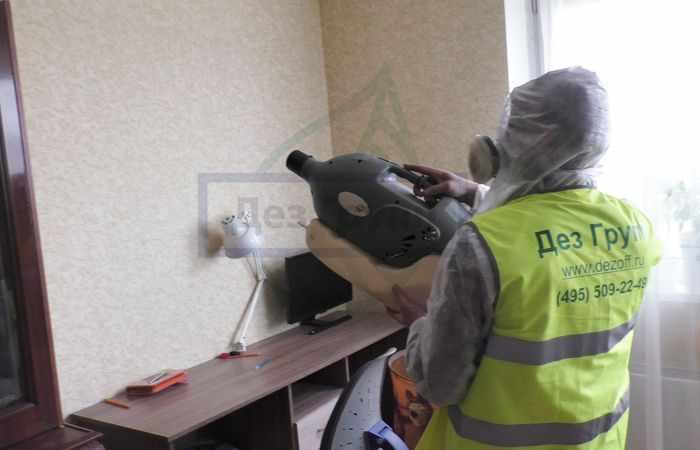 Как дезинфицировать квартиру от лишая - служба СЭС