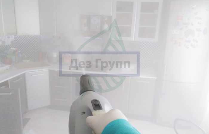 Санитарная обработка помещений при выявлении педикулеза