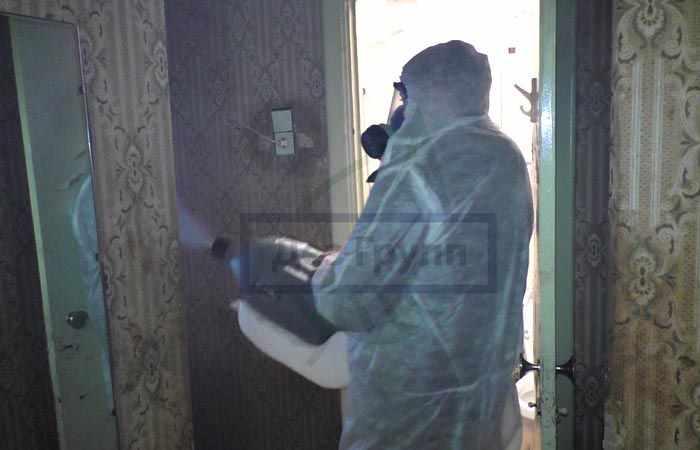 Уничтожение тараканов в квартире при обращении в СЭС
