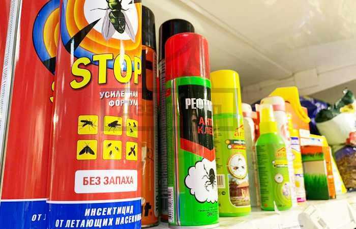 Уничтожение постельных блох с помощью химических препаратов