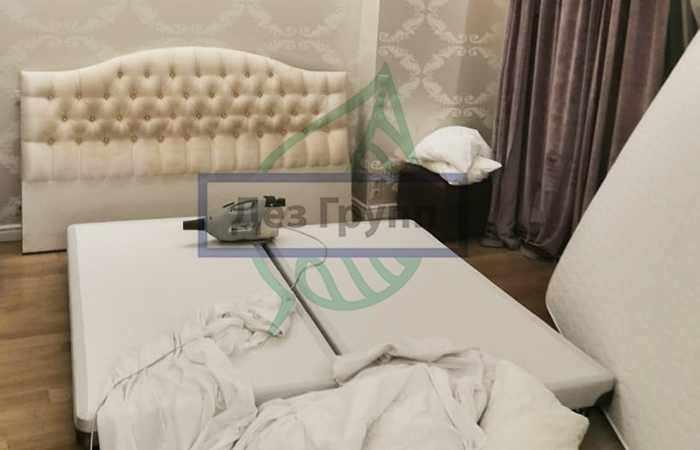 Живут ли клопы в подушках и одеялах, если обнаружили их в кровати?