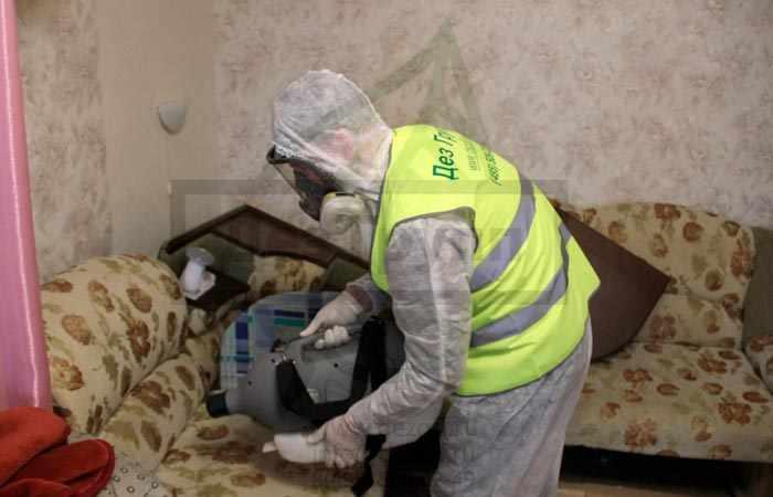 Подготовка квартиры к дезинсекции от тараканов