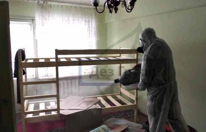 Удаление трупного запаха в квартире