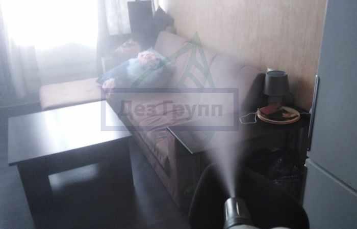 Удаление запахов сухим туманом - что это такое и как отличить от горячего тумана