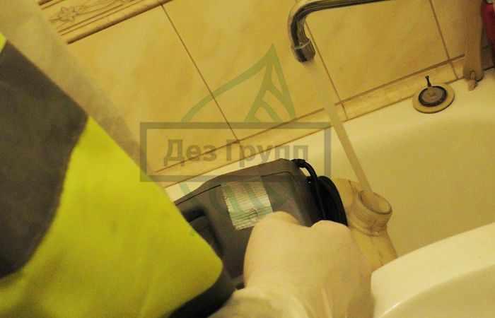 Плесень на плитке в ванной: как избавиться