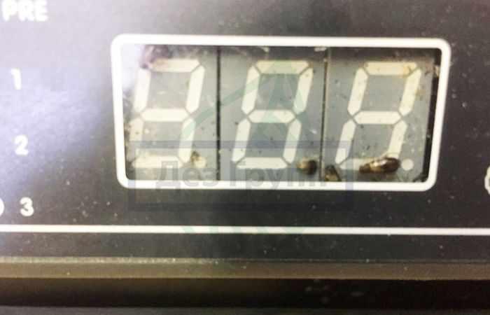 Тараканы в продуктовом магазине
