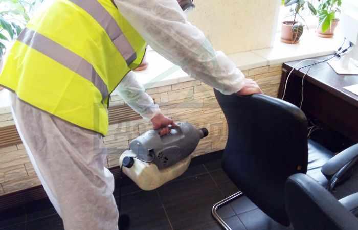 Как бороться с мокрицами в частном доме в Москве
