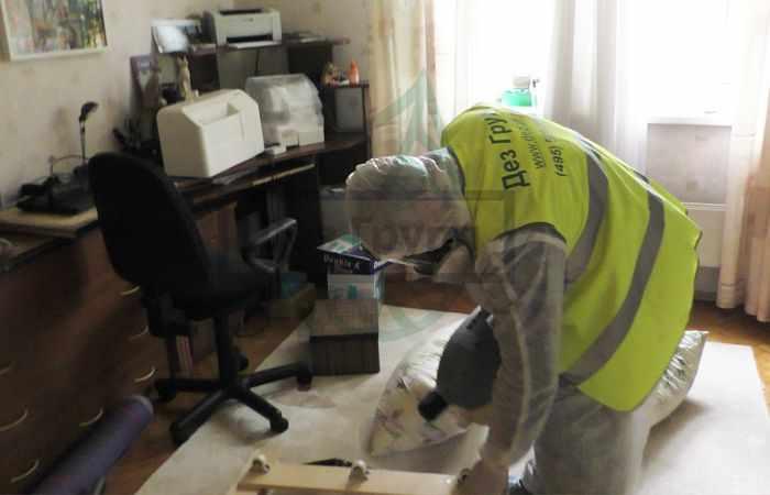 Уничтожение блох в квартире - средства