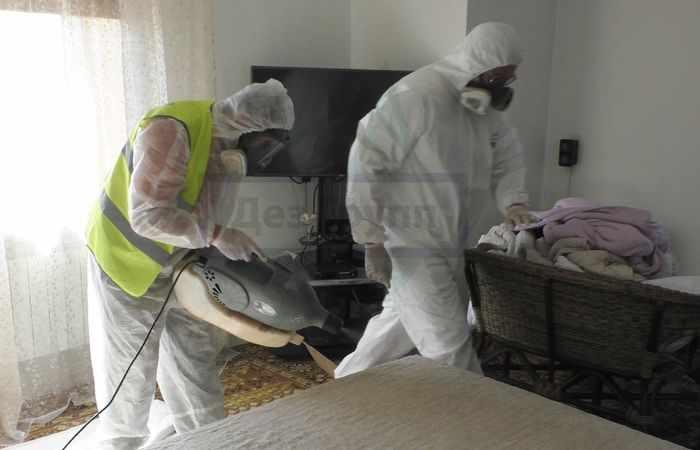 Как вывести тараканов из квартиры служба Дез Групп