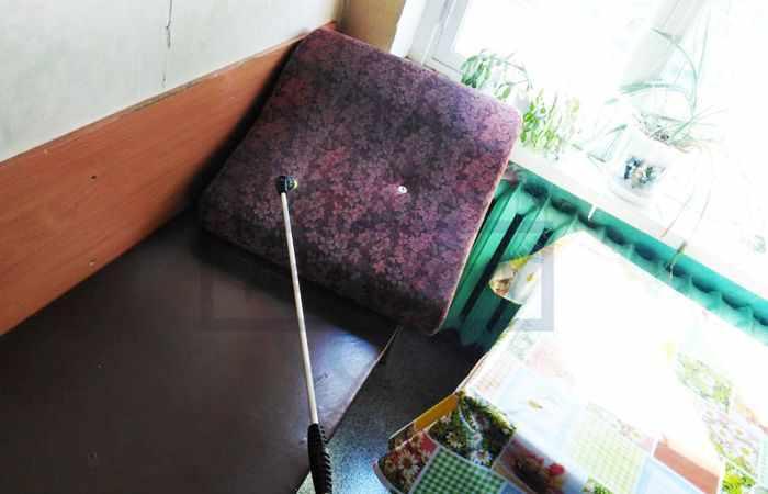 Борная кислота от муравьев в квартире - способы борьбы