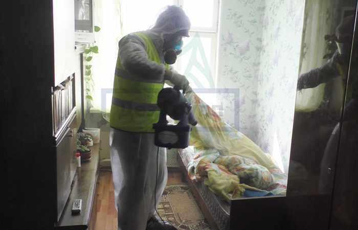 Как избавиться от постельных клопов - вызвать службу СЭС