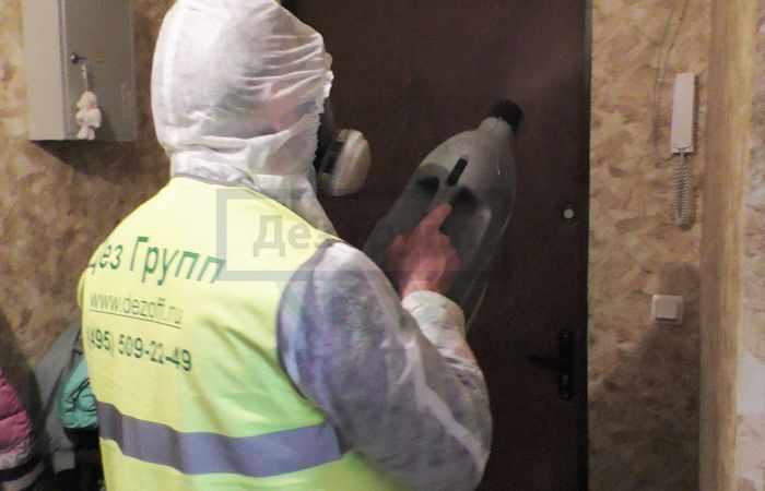 Как избавиться от грибка на стенах - служба СЭС
